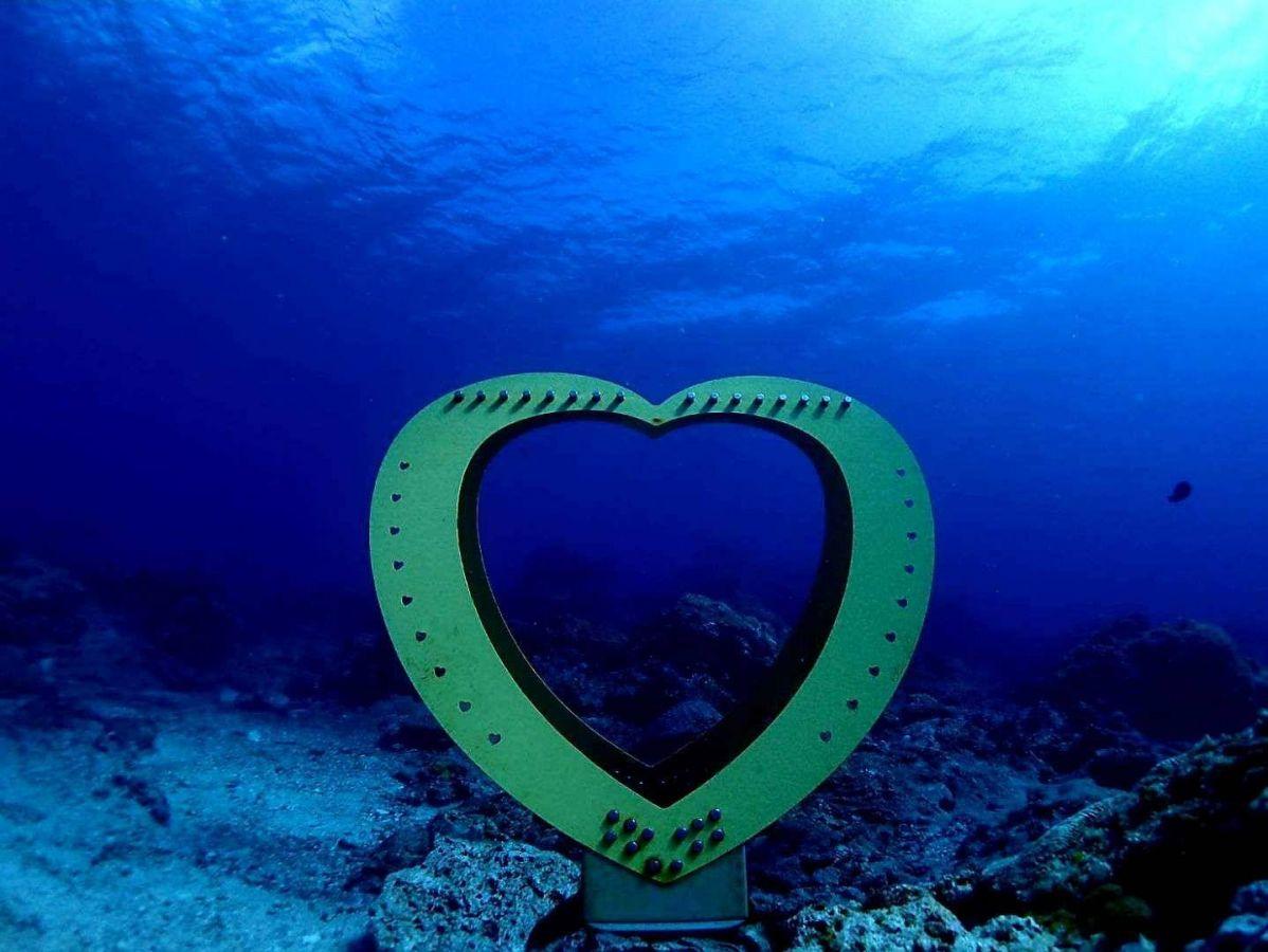 綠島潛水愛心